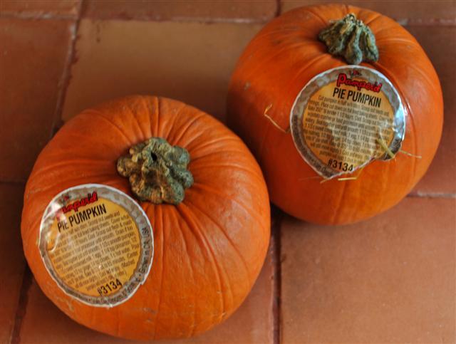 pumpkin-khoresht3-small