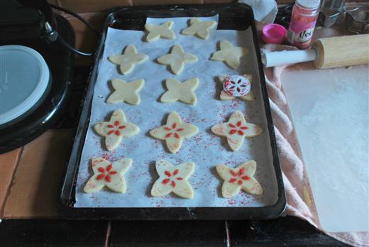 sugar-cookies13-custom
