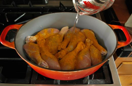 mitras-sunshine-chicken6-custom