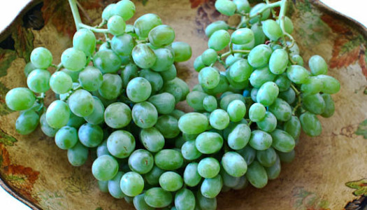 Ghooreh ~ Unripe Grape