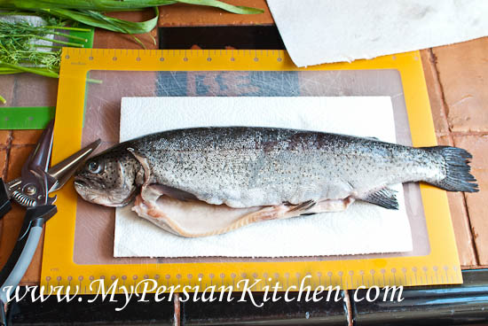 Trout with Narenj-2